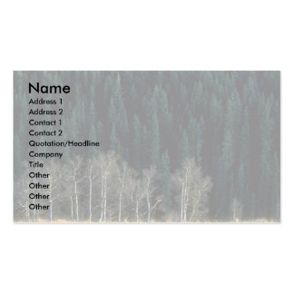 Aspen and spruce forest in the Sheep River Valley, Double-Sided Standard Business Cards (Pack Of 100)