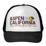 Aspen California Gorro De Camionero