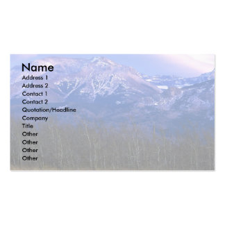 Aspen forest in the Rocky Mountain Foothills, Albe Double-Sided Standard Business Cards (Pack Of 100)