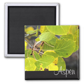 Aspen fridge magnet
