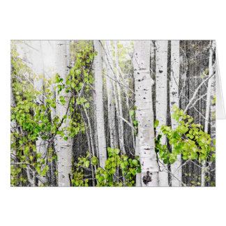 Aspen grove stationery note card