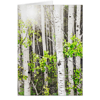 Aspen grove stationery note card
