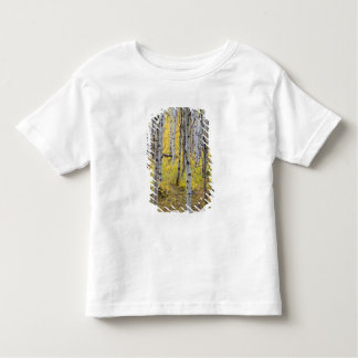 Aspen grove in peak fall color in Glacier Toddler T-shirt