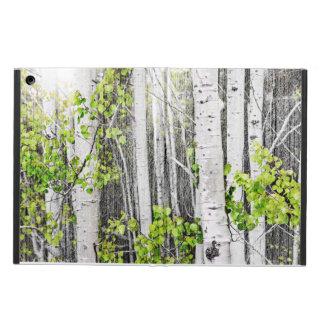 Aspen grove iPad air case