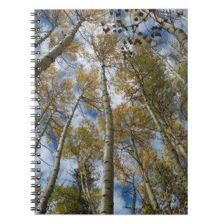 Aspen Grove Reaching toward the Sky Spiral Notebook