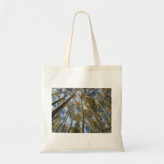 Aspen Grove Reaching toward the Sky Tote Bag