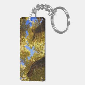 aspen keychain