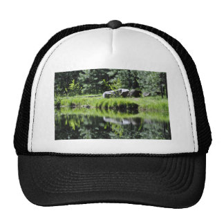 Aspen Lake Trucker Hat