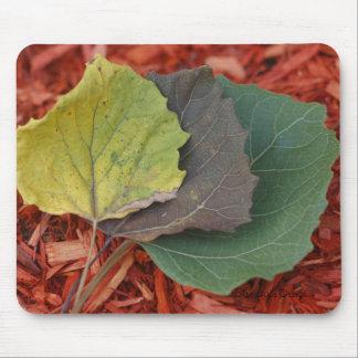 Aspen Leaf Mousepad
