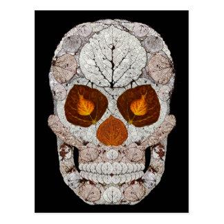 Aspen Leaf Skull 11 Postcard