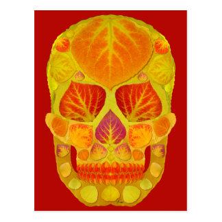 Aspen Leaf Skull 13 Postcard