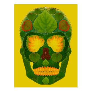 Aspen Leaf Skull 9 Postcard