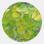 Aspen Leaf Stickers
