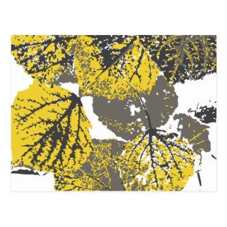 aspen leaves postcard