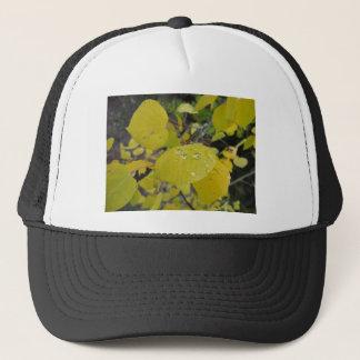 aspen raindrop trucker hat
