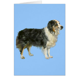 Aspen the Australian Shepherd Card