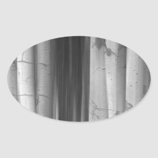 Aspen Tree Colonies Dreaming BW Oval Stickers