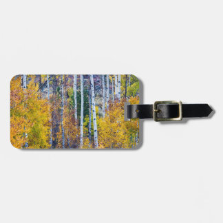 Aspen Tree Magic Cottonwood Pass Tag For Luggage