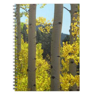 Aspen Tree Trunks in Golden Grove Spiral Notebook