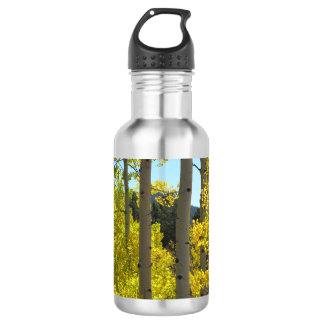 Aspen Tree Trunks in Golden Grove Water Bottle