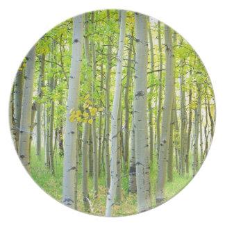 aspen_trees_autumn_time.jpg melamine plate