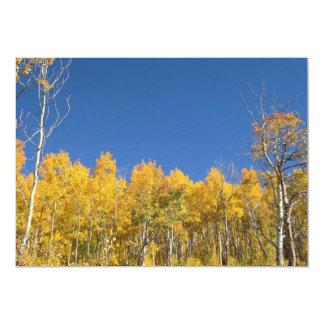 Aspen Trees, Colorado 5x7 Paper Invitation Card
