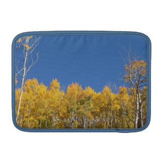 Aspen Trees, Colorado Sleeves For MacBook Air