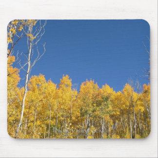 Aspen Trees, Colorado Mouse Pad