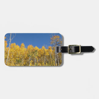 Aspen Trees, Colorado Tag For Luggage