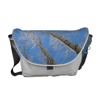 Aspen Trees Courier Bag