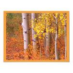 "Aspen trees in Autumn 4.25"" X 5.5"" Invitation Card"
