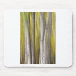 Aspen Trees in Autumn Color Portrait Dreaming View Mouse Pads