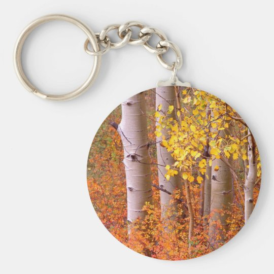 Aspen trees in Autumn Keychain