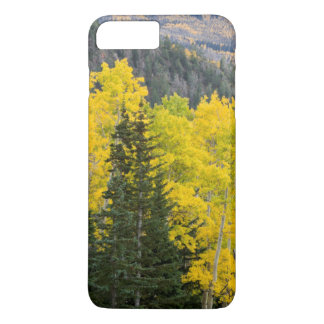 Aspen Trees (Populus Tremuloides) And Conifers 2 iPhone 8 Plus/7 Plus Case
