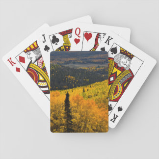 Aspen Trees (Populus Tremuloides) And Conifers Playing Cards
