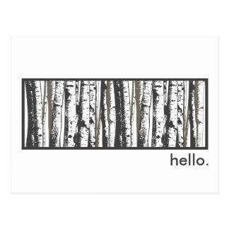 aspen trees postcard
