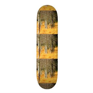 aspen trees skateboard