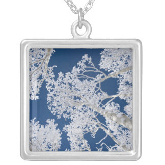 Aspen Trees with Snow Silver Plated Necklace