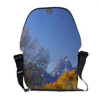 Aspen trees with the Teton mountain range 3 Courier Bag