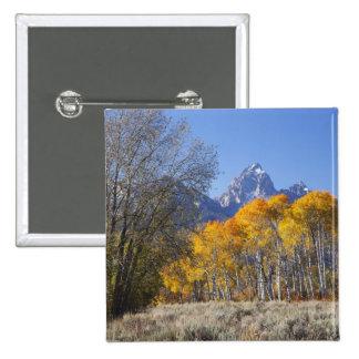 Aspen trees with the Teton mountain range 3 Pinback Button