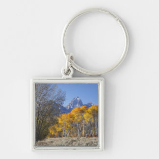 Aspen trees with the Teton mountain range 3 Silver-Colored Square Keychain
