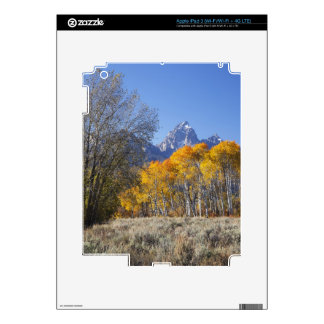 Aspen trees with the Teton mountain range 3 Decals For iPad 3