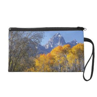 Aspen trees with the Teton mountain range 3 Wristlet Purse