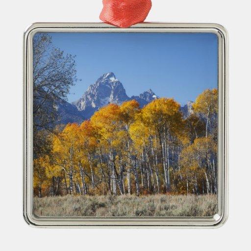 Aspen trees with the Teton mountain range 4 Metal Ornament