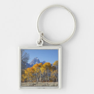 Aspen trees with the Teton mountain range 4 Silver-Colored Square Keychain