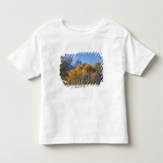 Aspen trees with the Teton mountain range 4 Toddler T-shirt