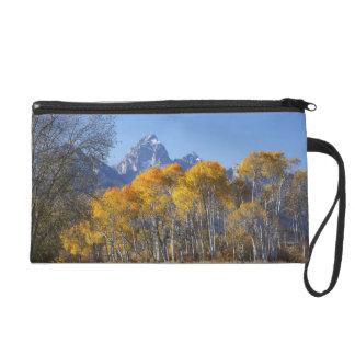 Aspen trees with the Teton mountain range 4 Wristlet