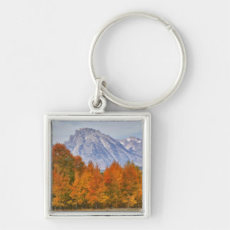 Aspen trees with the Teton mountain range 5 Silver-Colored Square Keychain