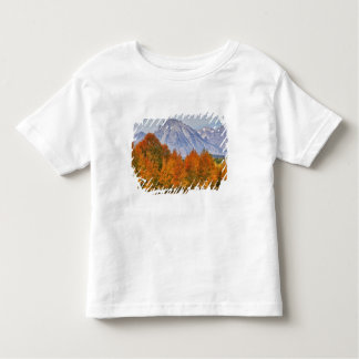Aspen trees with the Teton mountain range 5 Toddler T-shirt