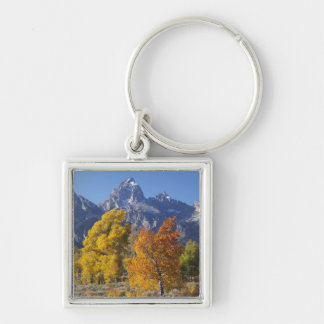 Aspen trees with the Teton mountain range 6 Silver-Colored Square Keychain